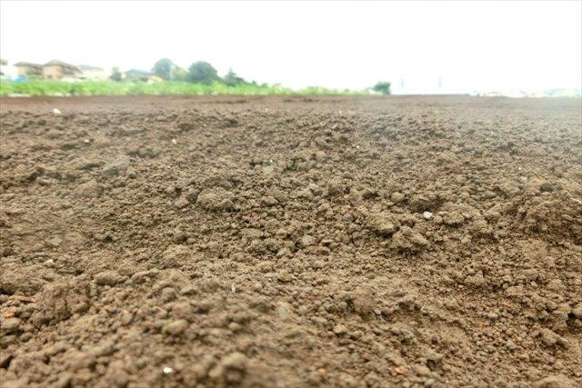 良い作物が育つ土の条件