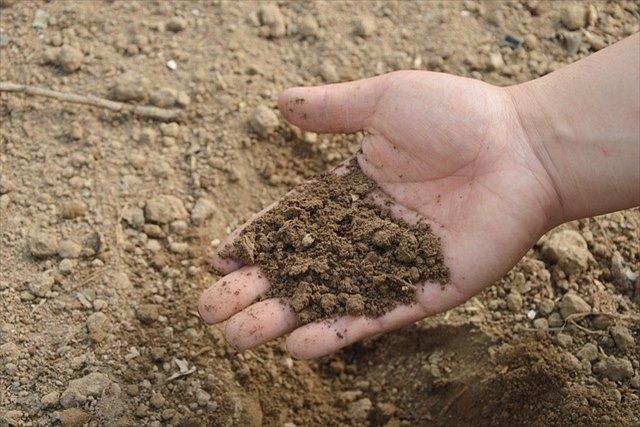 簡単に土質を調べるコツ