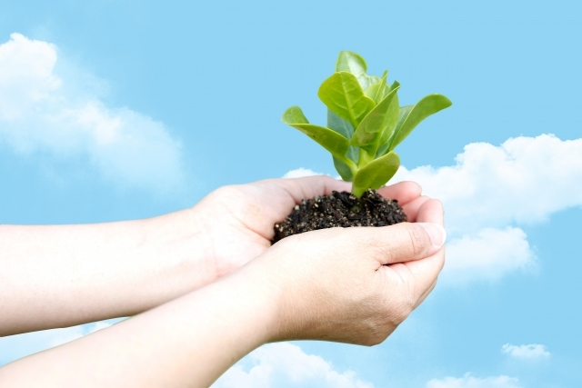 屋上の緑化・菜園で使用した土を再生させるなら【株式会社カクタニ】へ~ガーデニングに最適な肥料~