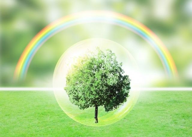 法面緑化を行う際は緑化・環境資材のベストパートナーの【株式会社カクタニ】へ