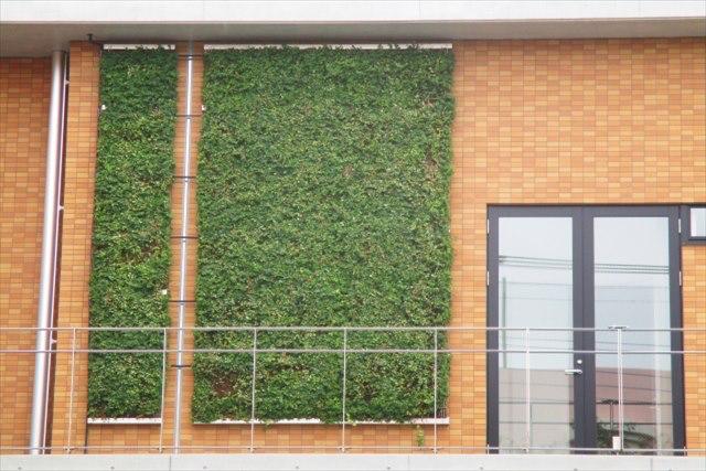 緑化システムで駐車場・屋上・壁面を癒しのガーデンに変身させるなら株式会社カクタニへ