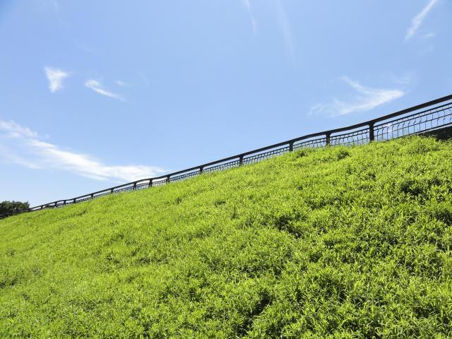 法面緑化に求められる機能