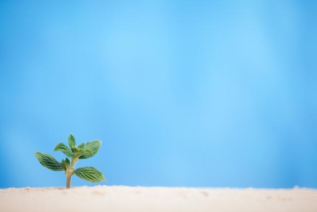 特殊肥料「バイオの恵FG」の特徴やメリット