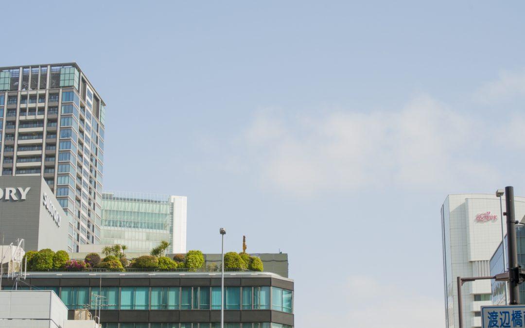 緑化システムの相談は株式会社カクタニまで~屋上を緑化する際のポイント~