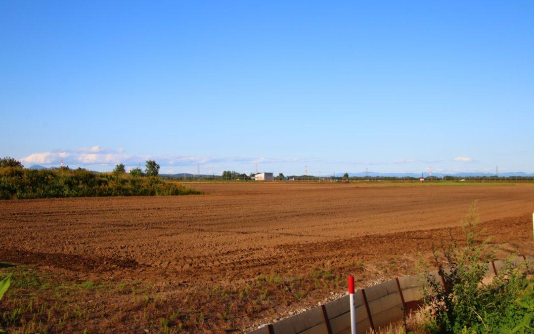 土壌改良材を通販でお求めなら豊富な種類を揃える株式会社カクタニ~良い土の条件とは~
